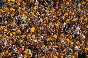 Wyoming Fans - Kari Eakins